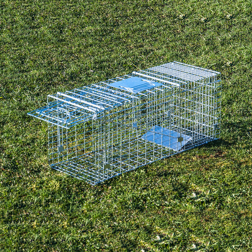 Possum Trap - Large Cage