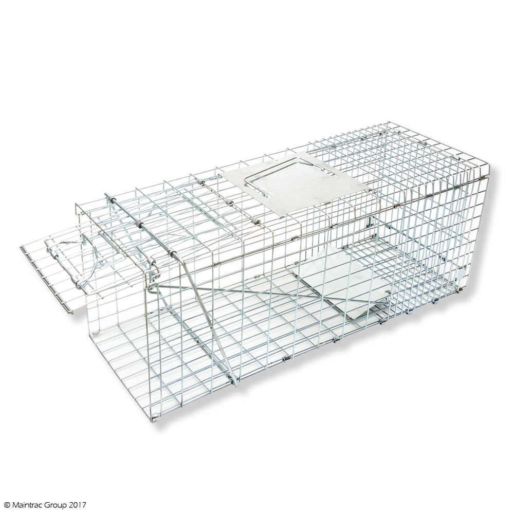 Cat Trap - Medium Cage