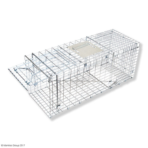 Large Cage Traps x 5