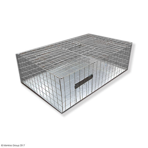 Pigeon Cage Trap