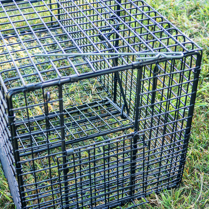 Professional Cage Trap Rear Bait Door
