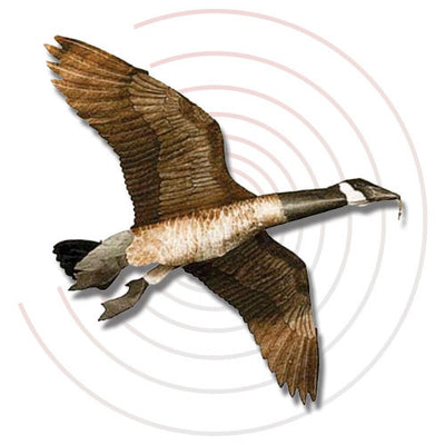 Canadian Goose - Decoy Kite