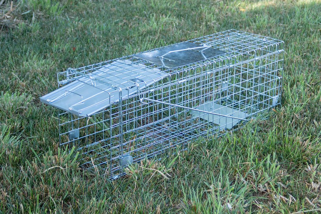 Small Cage Trap Open