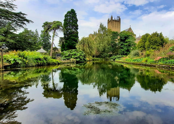wells cathedral bishops palace gardens copyright stephanie male 2020