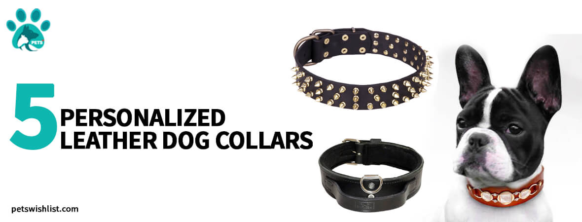 5 personalized leather dog collars 2020-2021