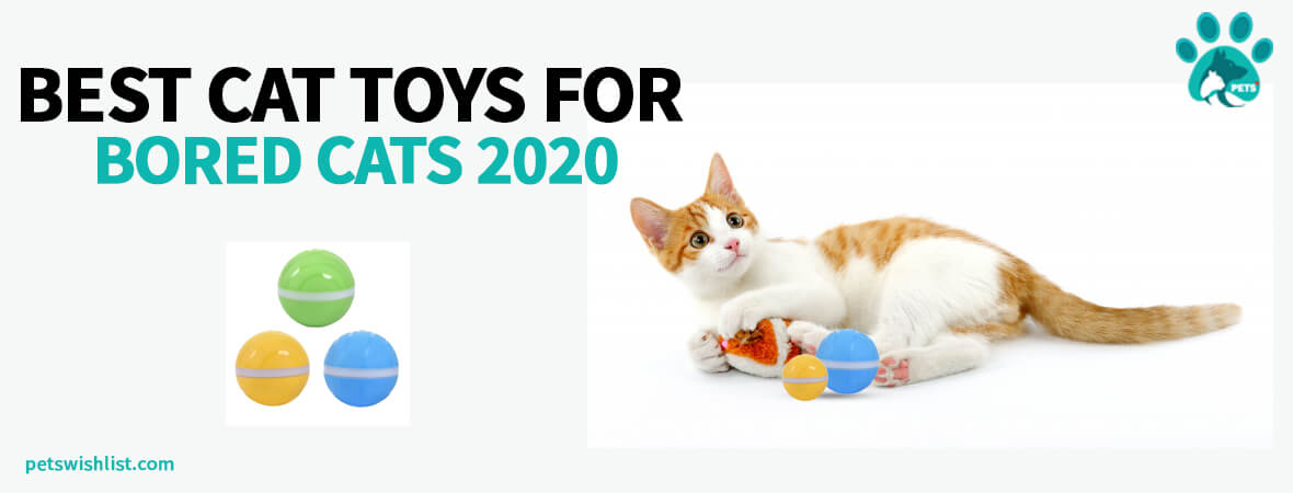 Best Cat Toys For Bored Cats 2020
