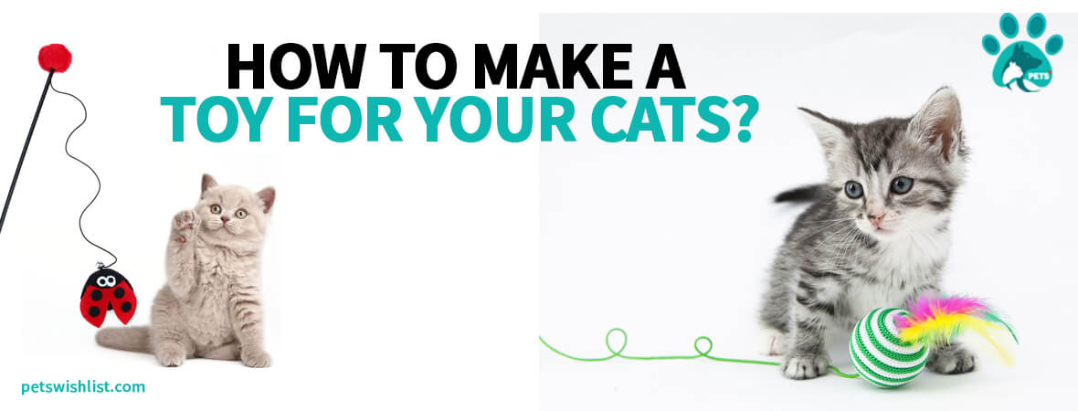 How To Make A Toy For Your Cats?