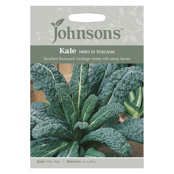 Johnsons Kale Nero Di Toscana Seeds - DeWaldens Garden Centre