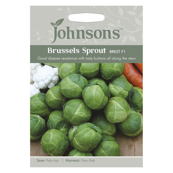 Johnsons Brussels Sprout Brest F1 Seeds - DeWaldens Garden Centre