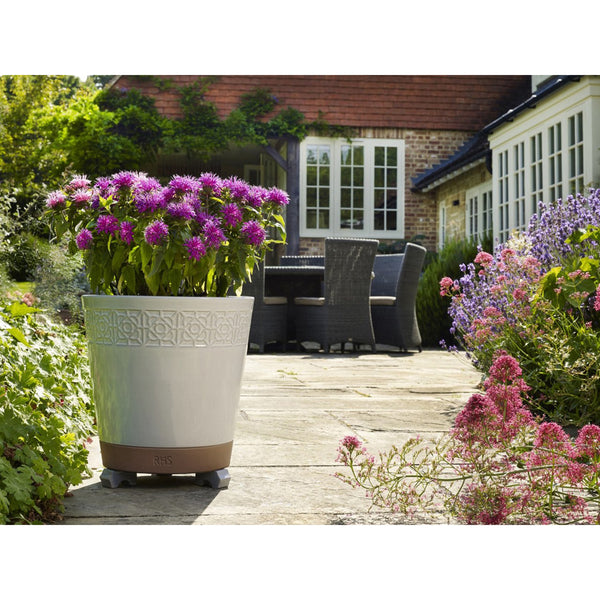 Apta RHS Close Borders Cone Planter - DeWaldens Garden Centre