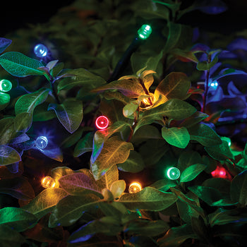 Cole & Bright Solar 100 LED String Lights - Multicoloured - DeWaldens Garden Centre
