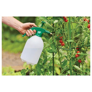 Grow It 2 Litre Pressure Sprayer - DeWaldens Garden Centre
