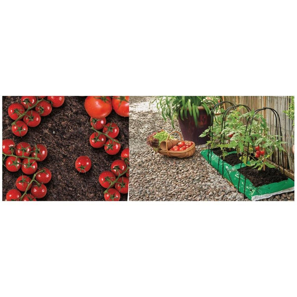 Grow It Grow Bag Cane Frame Support 3 Pack - DeWaldens Garden Centre