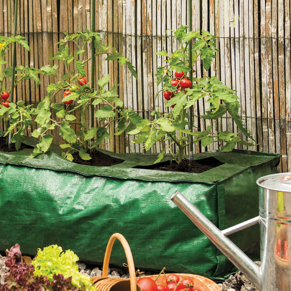 Grow It Heavy Duty Grow Bag - DeWaldens Garden Centre