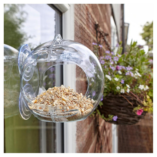 Peckish Globe Window Feeder - DeWaldens Garden Centre