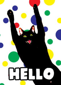 Crazy Hello Cat Card