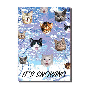 It's Snowing Cats Christmas Card