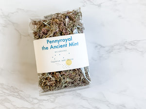 Pennyroyal Ancient Mint