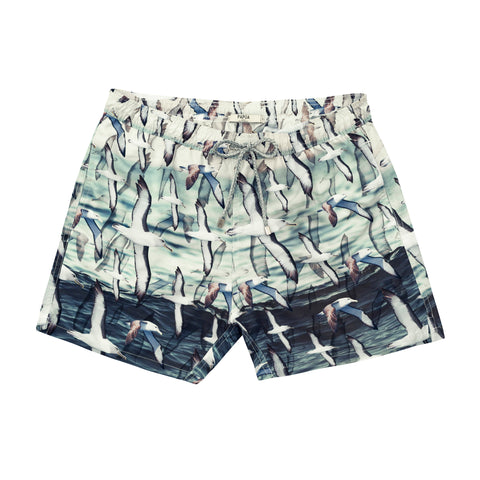 Albatross Swim Short