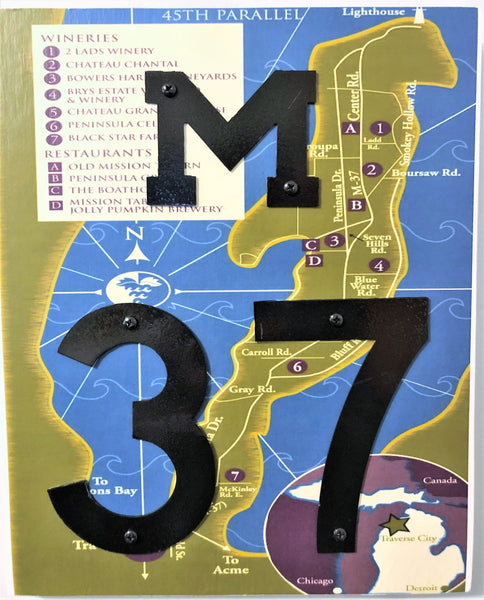 M-37 road sign wall hanging