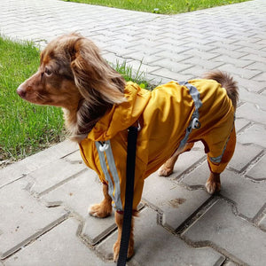 Reflective Raincoat - Fluffy Palace