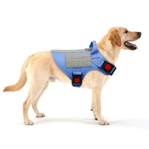 No pull Padded Harness (Medium Large Dogs) - Fluffy Palace