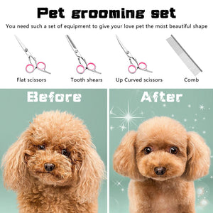 Stainless Steel Grooming Set (Scissors and Comb) - Fluffy Palace