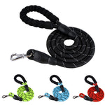Reflective Nylon Dog Leash - Fluffy Palace