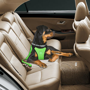 Modern Car Harness & Belt - Fluffy Palace