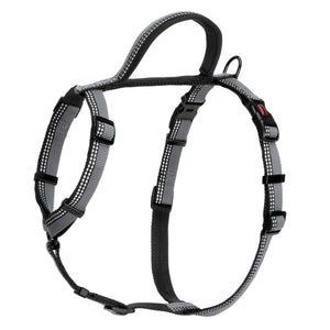 HALTI Walking Harness - Fluffy Palace