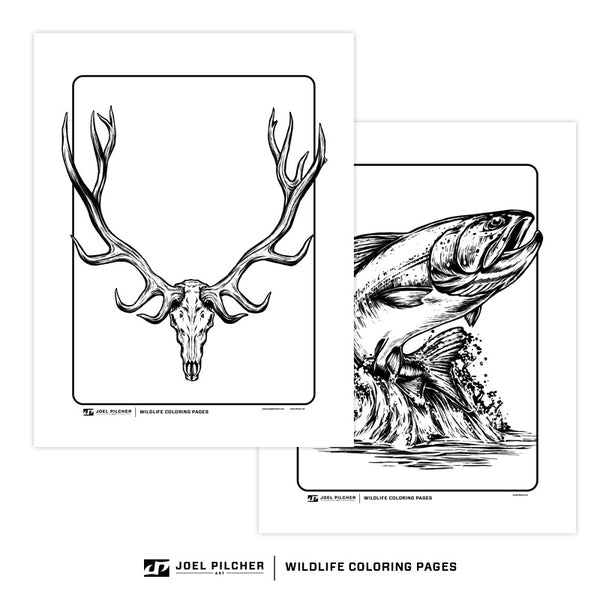 Wildlife Coloring Pages Combo Pack - All 40 Pages + Bonus 5 Pack