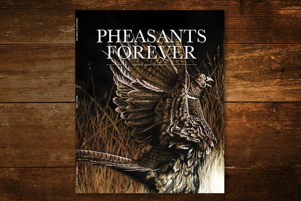 """Call of the Uplands Pheasant"""