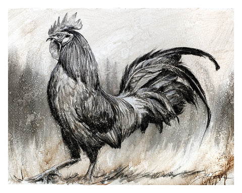 Rooster Study Original
