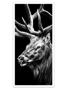 Triple Crown Elk