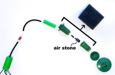 air stone in a sponge filter