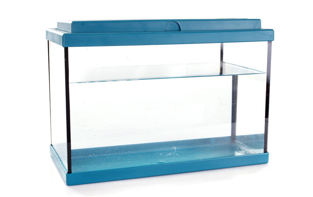 rimmed, glass aquarium