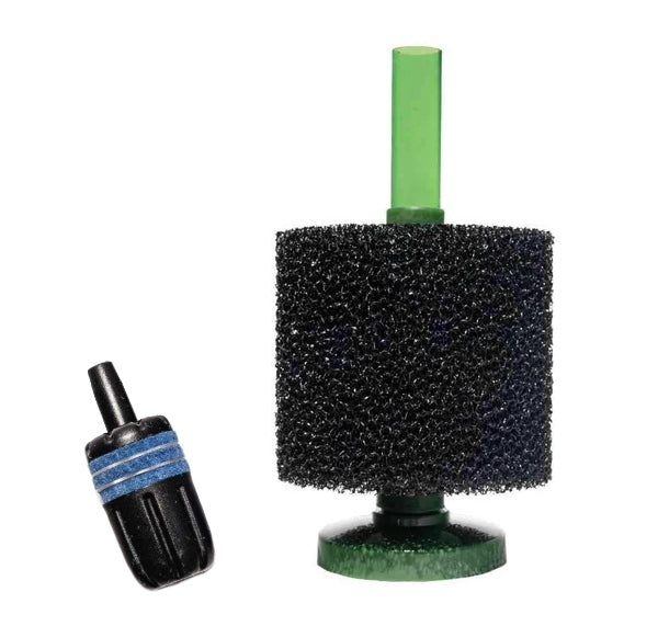 sponge filter with air stone