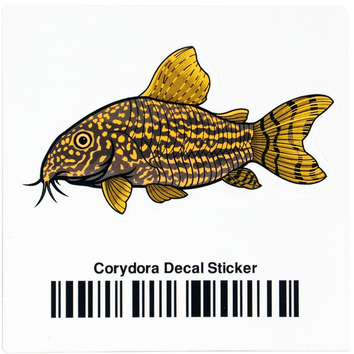 Corydoras Decal Sticker