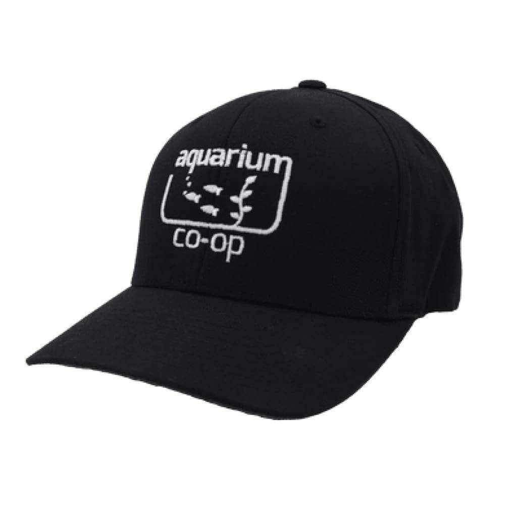 Aquarium Co-Op Hat-Aquarium Co-Op
