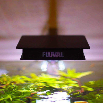 Fluval Plant 3.0 LED NANO-Aquarium Co-Op