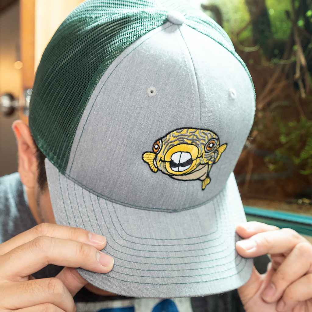 Murphy Mesh Snapback Hat-Aquarium Co-Op