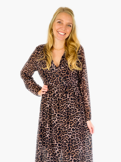 Jean and Jil Kleid Leopard dark