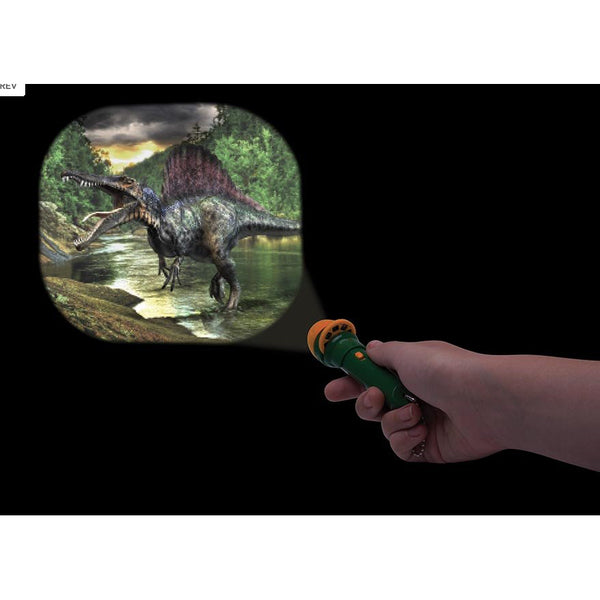 IS torch projector dinosaurs - Chalk