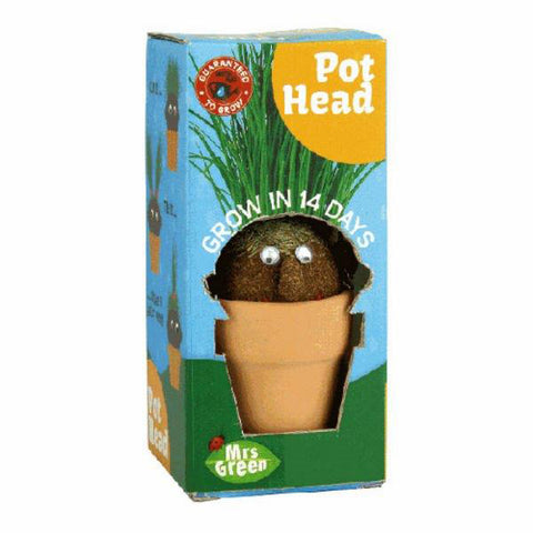 mrs green pot head - Chalk