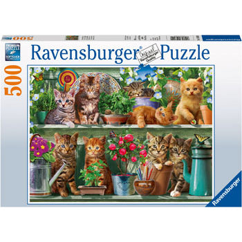 ravensburger puzzle 500pc cats on the shelf - Chalk