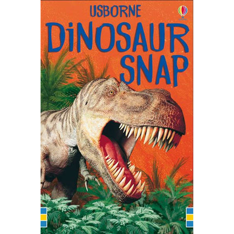 usborne cards dinosaur snap - Chalk