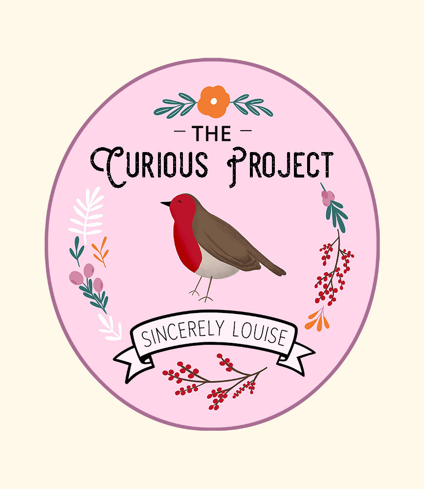 The Curious Project - Winter Robin