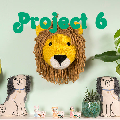 Project 6 Lion Head Kit - First Time Knits