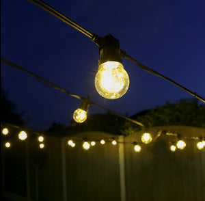 10 Connectable Warm White Festoon Lights, Clear Bulbs, Black Cable 1.jpg