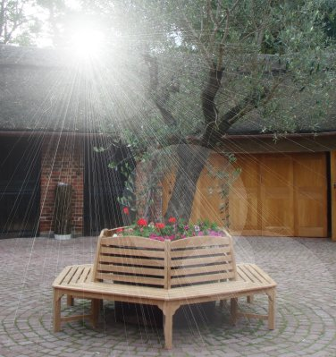 SALE - Teak Hexagonal Tree Seat | 2.5m Diameter